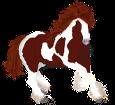 Paint horse - Fell 1000000163