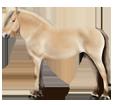 Norwegisches Fjordpferd - Fell 20