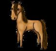 Przewalski-Pferd - Fell 1000000168